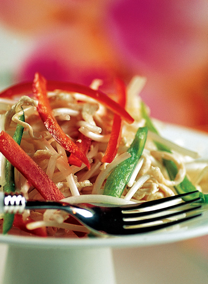 Chicken Bean Sprout Salad